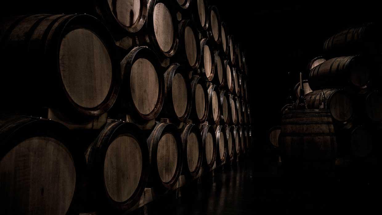 Weinflaschen werden am besten kühl, dunkel und trocken gelagert. (Foto: Daniel Vogel / Unsplash)